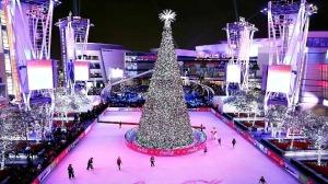 LA Live Ice Rink