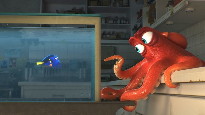 hank.octopus